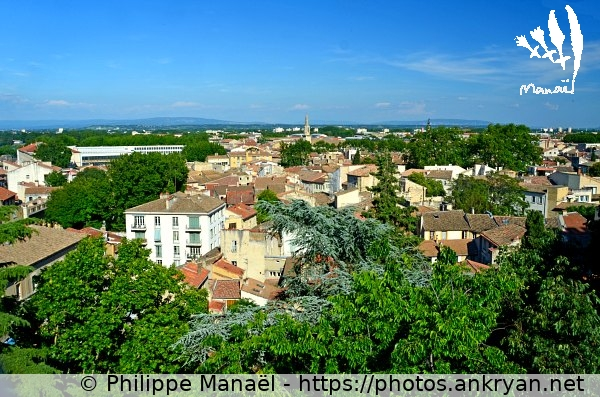 Vue panoramique (France / Ville / Avignon)