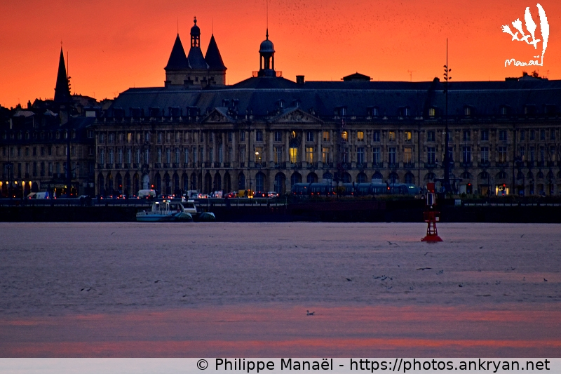 Soleil couchant : Palais de la Bourse / Bordeaux / Ville / France