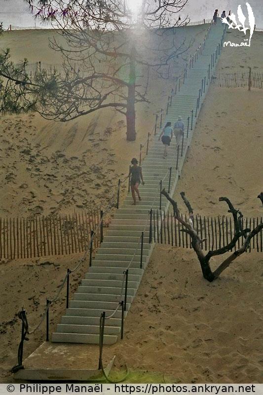 dune du pilat escalier travers 233 e des landes ankryan photos
